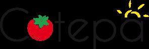 Site Internet Cotepa